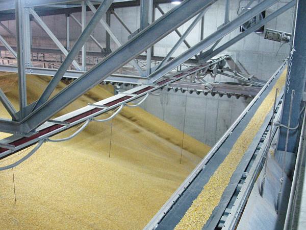 Нивелировщики зерновые